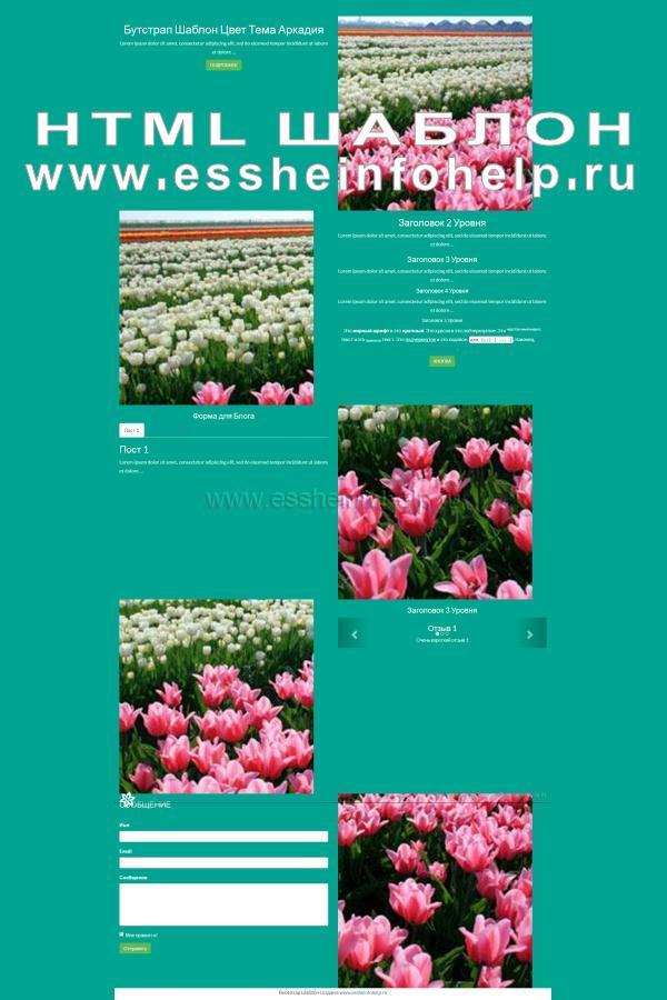 Сайт визитка на html зеленого цвета