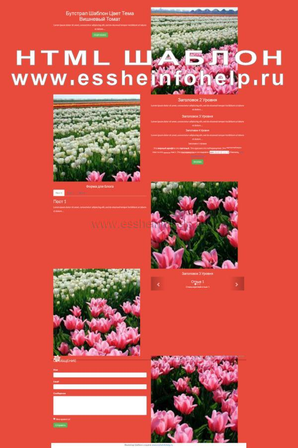 Сайт визитка на html красного цвета