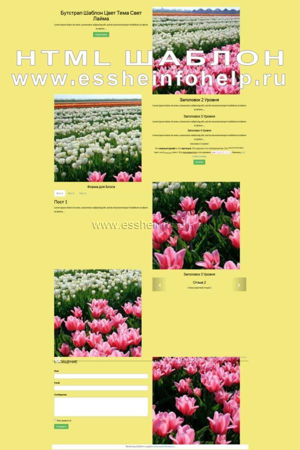 Сайт визитка на html желтого цвета