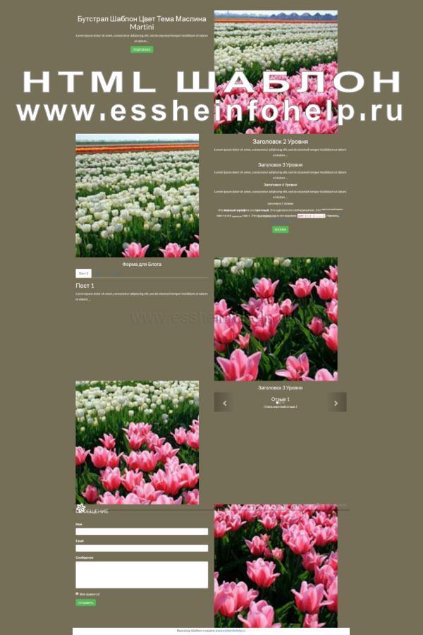 Сайт визитка на html коричневого цвета
