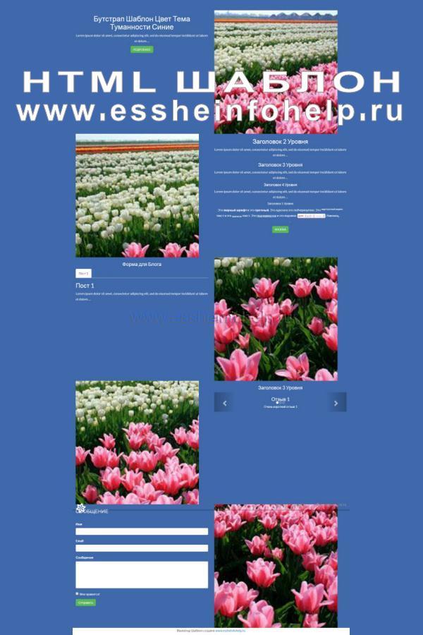 Сайт визитка на html синего цвета