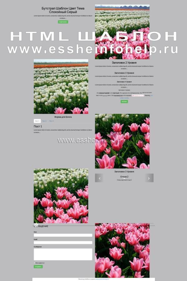 Сайт визитка на html спокойного серого цвета