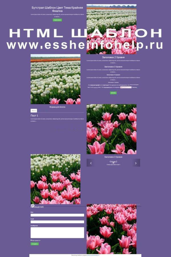 Сайт визитка на html фиолетового цвета